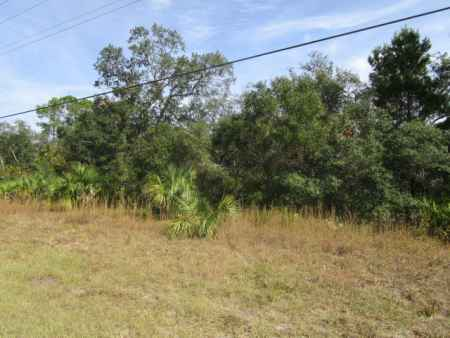 1.2 Wooded Acres On Hwy. 51