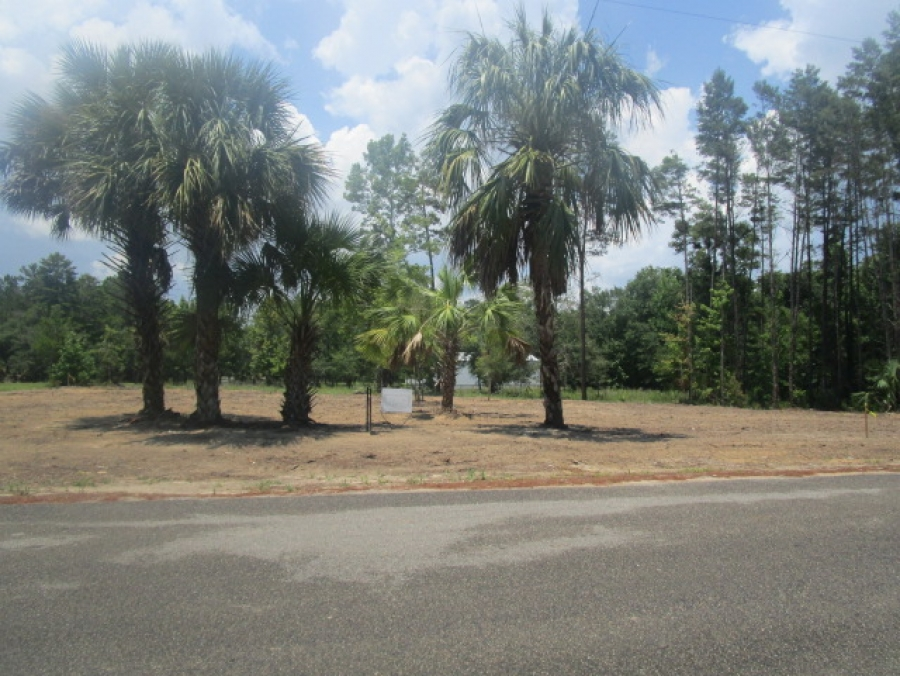 BEAUTIFUL LOT IN GREAT SUBDIVISION